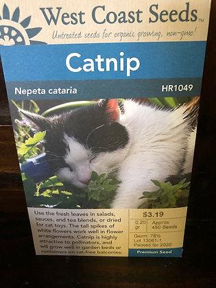 Catnip  -  West Coast Seed