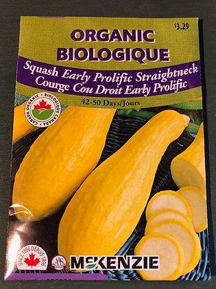 Squash Straightneck - McKenzie  Organic