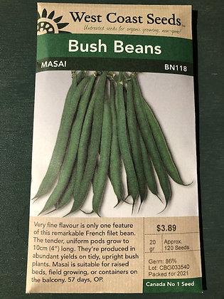 Bean Bush Masai  -  West Coast Seed