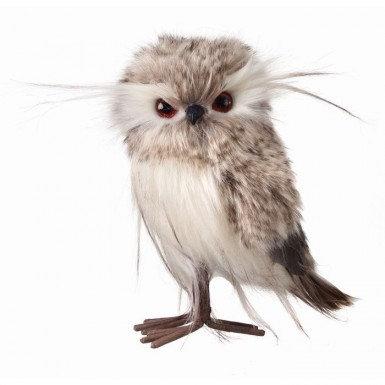 Grey Furry Owl
