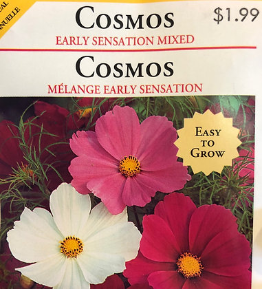 Seed - OSC - Cosmos Early Sensation Mix