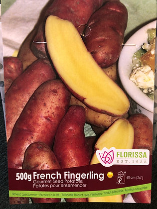 Seed Potatoes - Gourmet French Fingerling- 500 gm