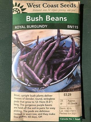 Bean Royal Burgundy   -  West Coast Seed