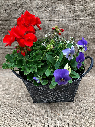 "Mothers Day Planter Small (9"" Long) - Please Select Colour"