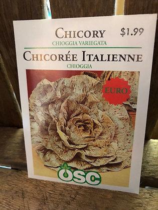 Seed - OSC - Chicory Chioggia