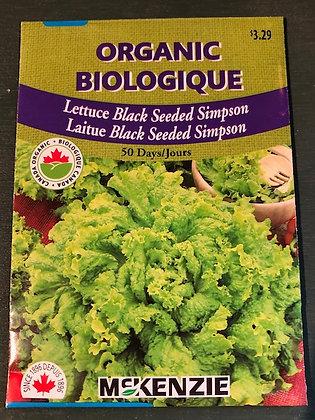 Lettuce Black Seeded Simpson - McKenzie Organic
