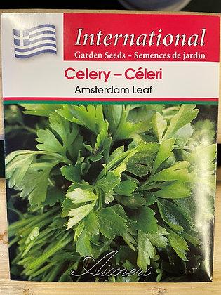 Celery Amsterdam Leaf  -  Aimers International