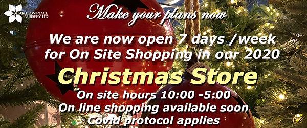 2020 christmas shop 2.jpg