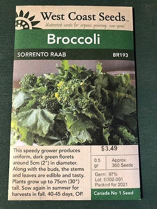 Broccoli Sorrento Raab  -  West Coast Seed