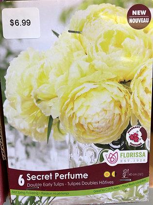 Tulip - Secret Perfume