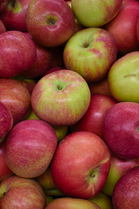 FT Apple MacIntosh 7gal #9377