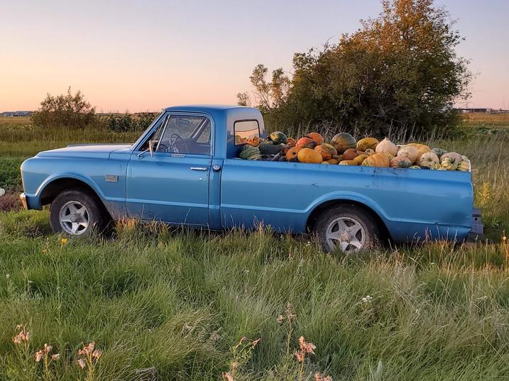 67 Blue Truck Manitoba