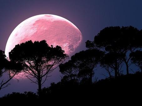 Ritual para atraer prosperidad con la luna rosa