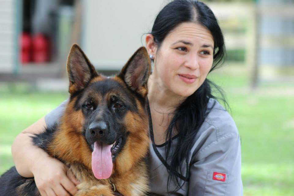 German Shepehrds in Florida, Southernwind