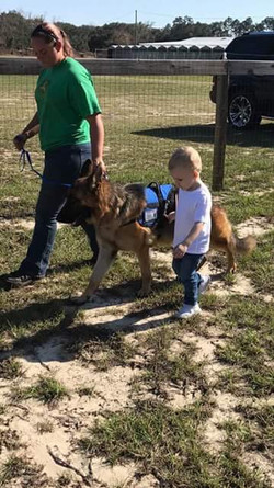 Southernwind Service Dogs