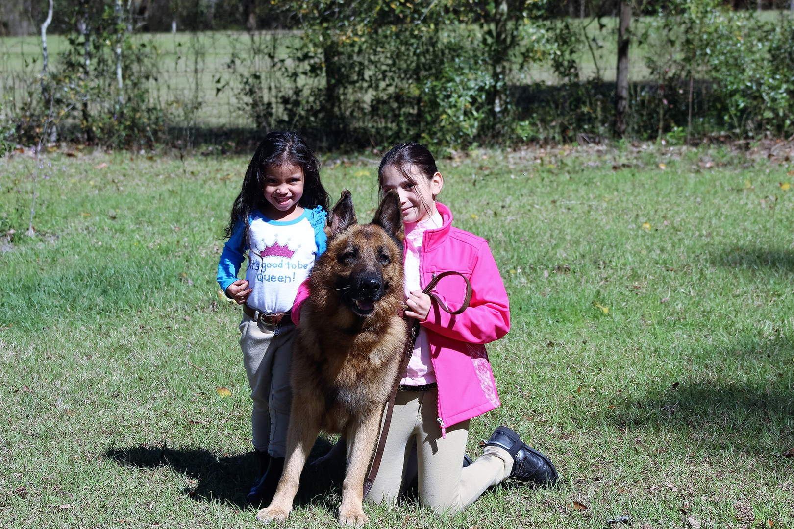 German Shepehrds that are people Pleasers