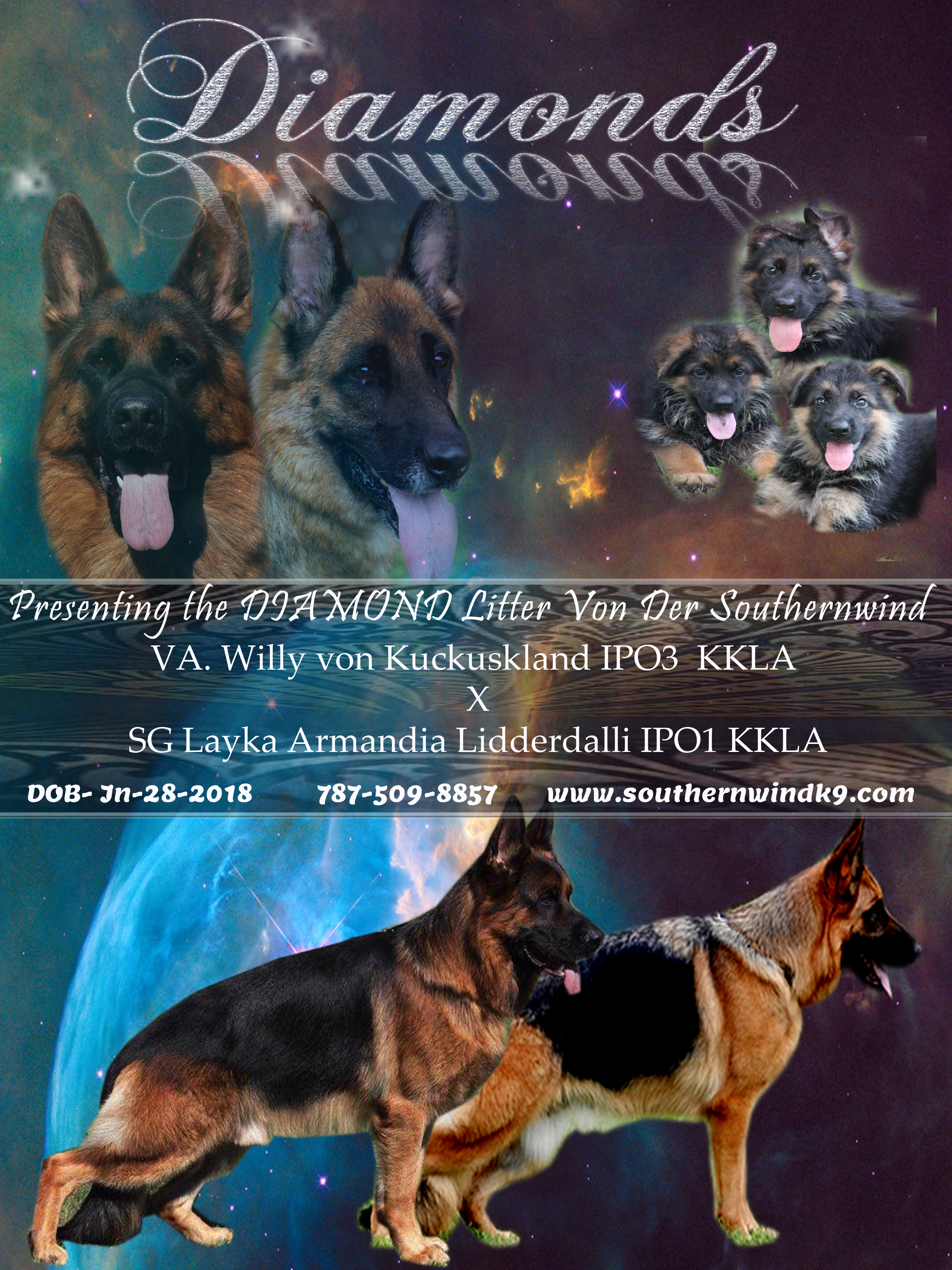 willy-Layka diamond litter