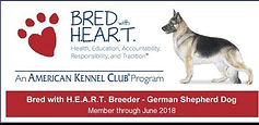 Southernwind Kennels, AKC Bred with Heart, German Shepherds in Florida