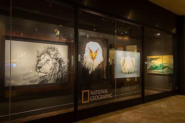 Nat Geo Fine Art Galleries. Oahu, Hawaii.
