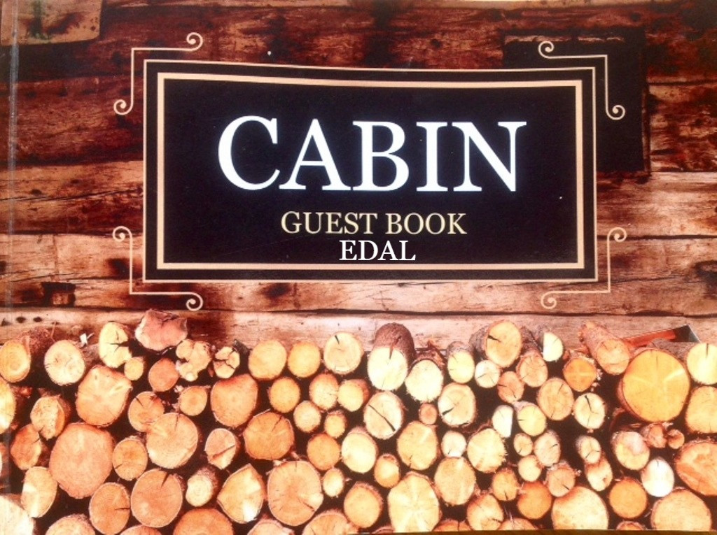 Cabin book cover_edited.jpg