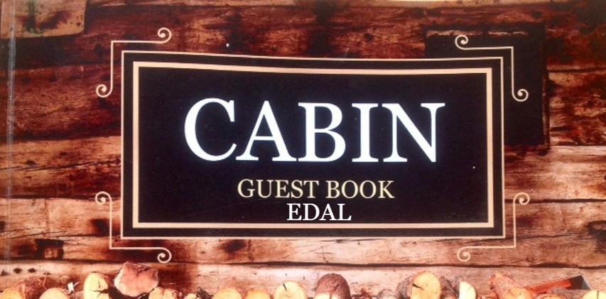 Cabin book cover_edited.jpg