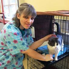 Cat cages (2).jpg