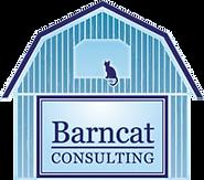 Barncat%20consulting%20clipart_edited.pn