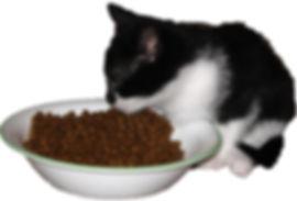 ARLNH Food Pantry
