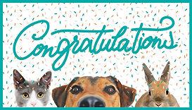 eCard Congrats-confetti.jpg
