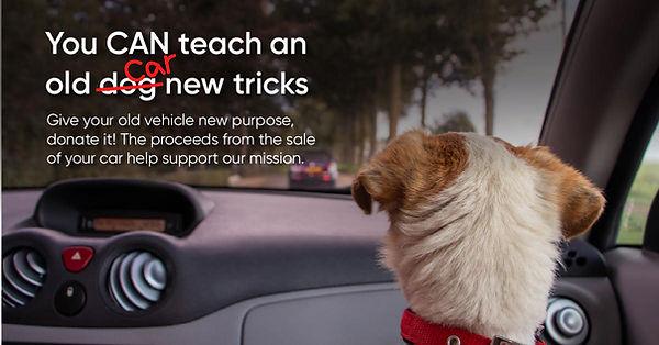 CARS dog promo.jpg