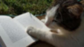 ARLNH Pet Resources