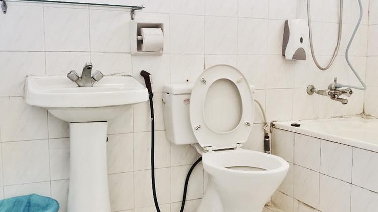 semi-d_toilet.JPG