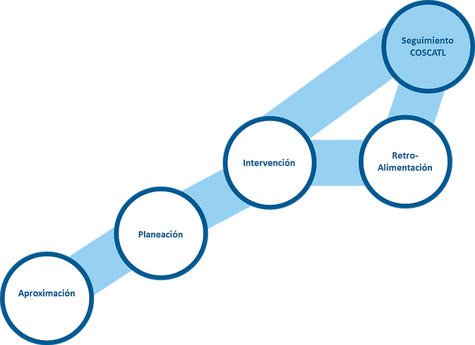 Consultoria Desarrollo Organizacional infografia