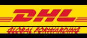 DHL Team building mexico