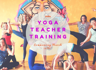6 Reasons Why You Should Enrol in Yoga Teacher Training TODAY!
