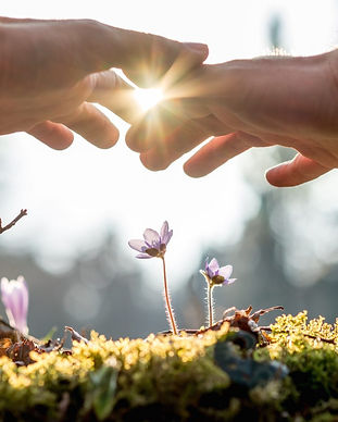 Reiki-sun-hands-image-1920x971.jpg