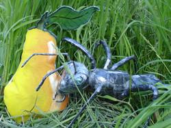 fourmi et poire