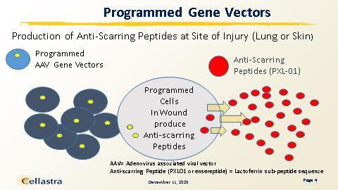 Programmed Gene Vectors.jpg