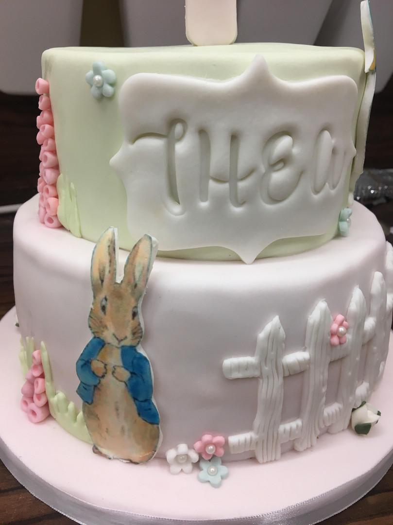 Peter Rabbit inspired birthday cake.jpg