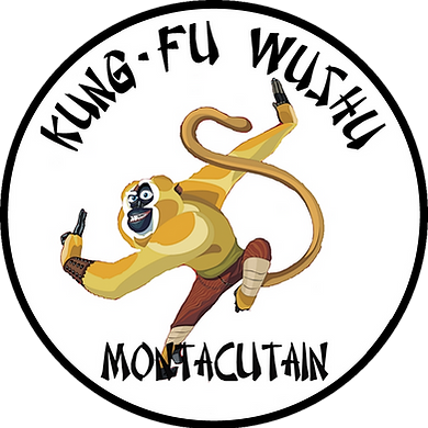 Bruno Evola; Kung Fu Wushu; Montaigu; journee des associations