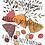 """Thumbnail: Clipartset """"Herbstblätter bunt und schwarzweiss"""""""