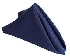 navy blue napkin.jpg