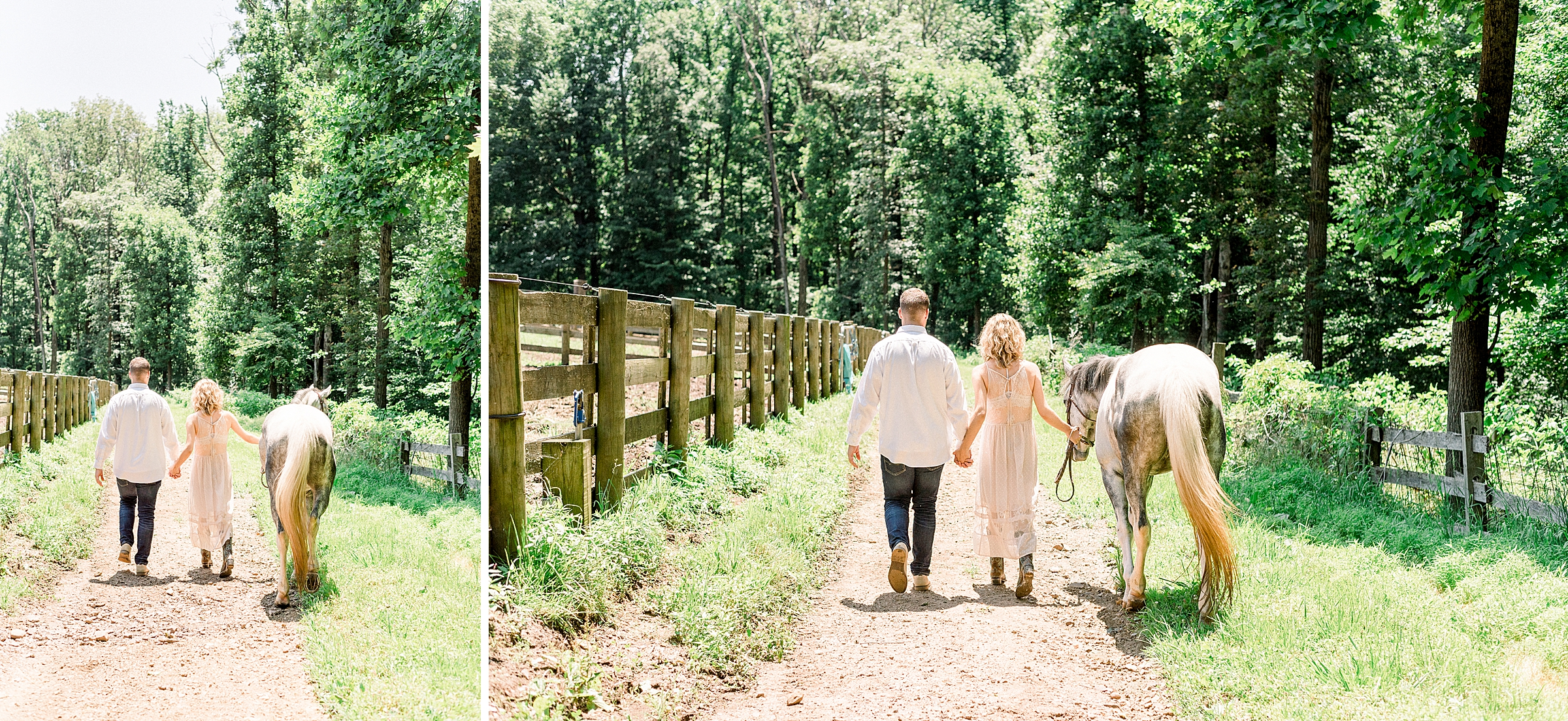 Pregnant woman with horse and boyfriend on a farm at the Phoenix Rising Farm