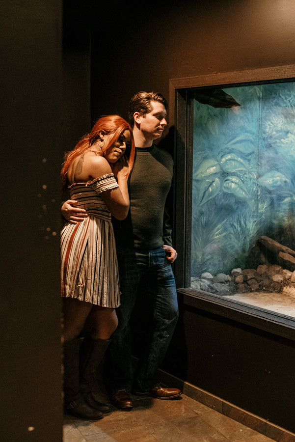 Couple observing reptiles at the Lehigh Valley Zoo