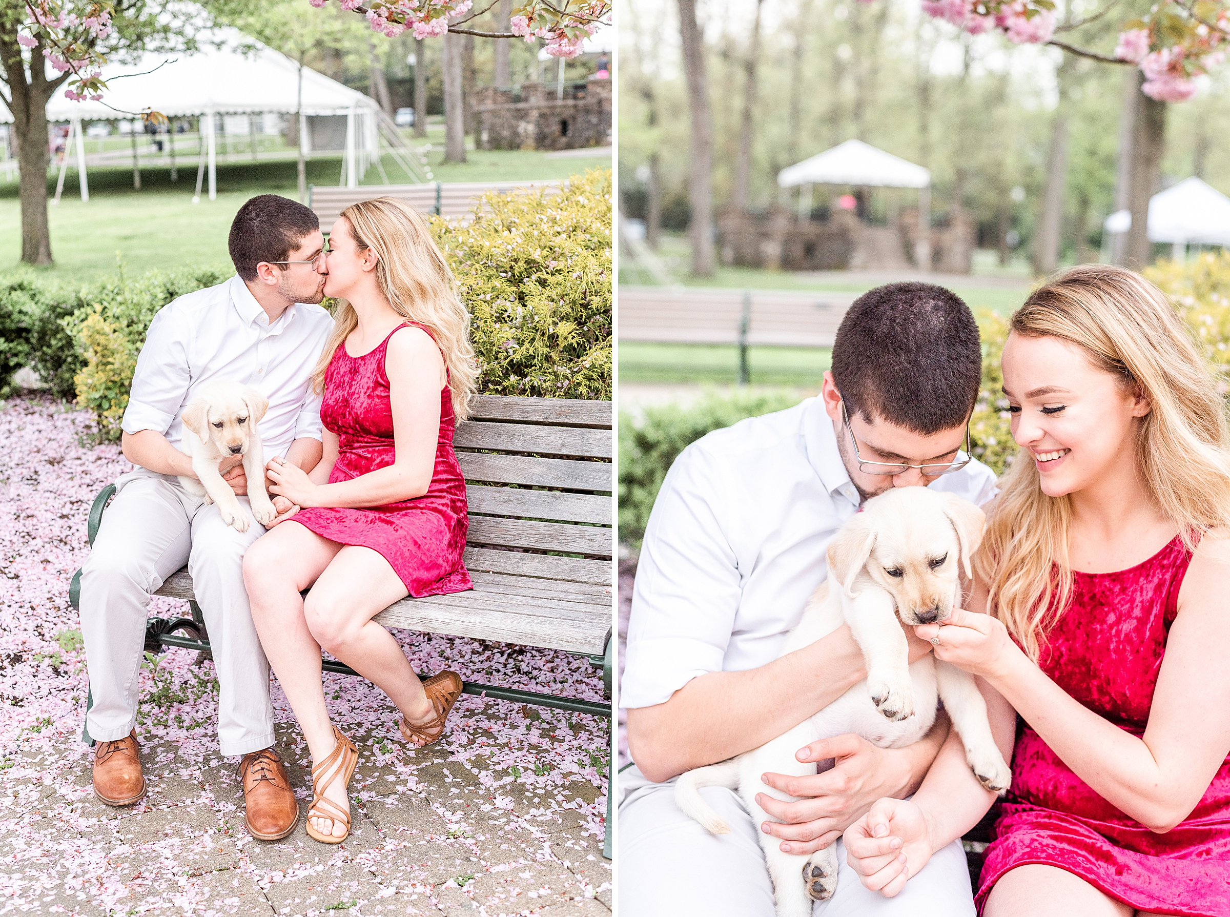Girlfriend and boyfriend with their puppy sitting on a bench in Verona Park in NJ