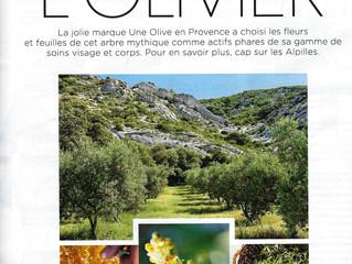 Les trésors de l'olivier