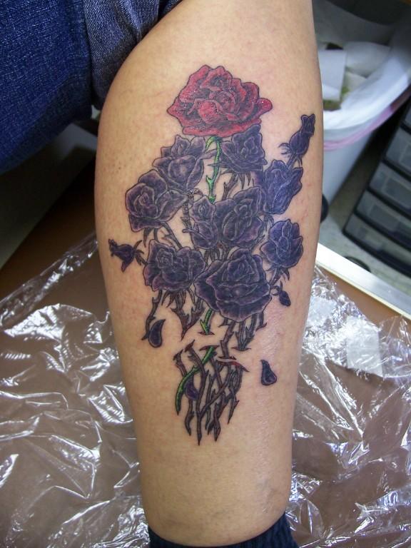 red_rose_among_black_roses.jpg