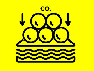 Carbon Capture   How infrastructure can help