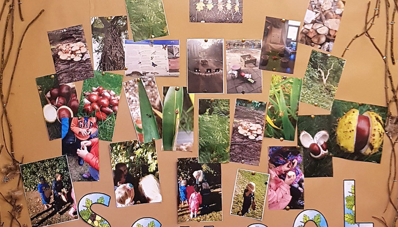 forest school wall 1.jpg