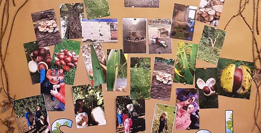 forest school wall 1.jpg